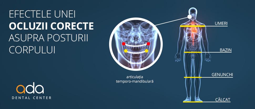 Muscatura corecta determina armonie a intregului corp